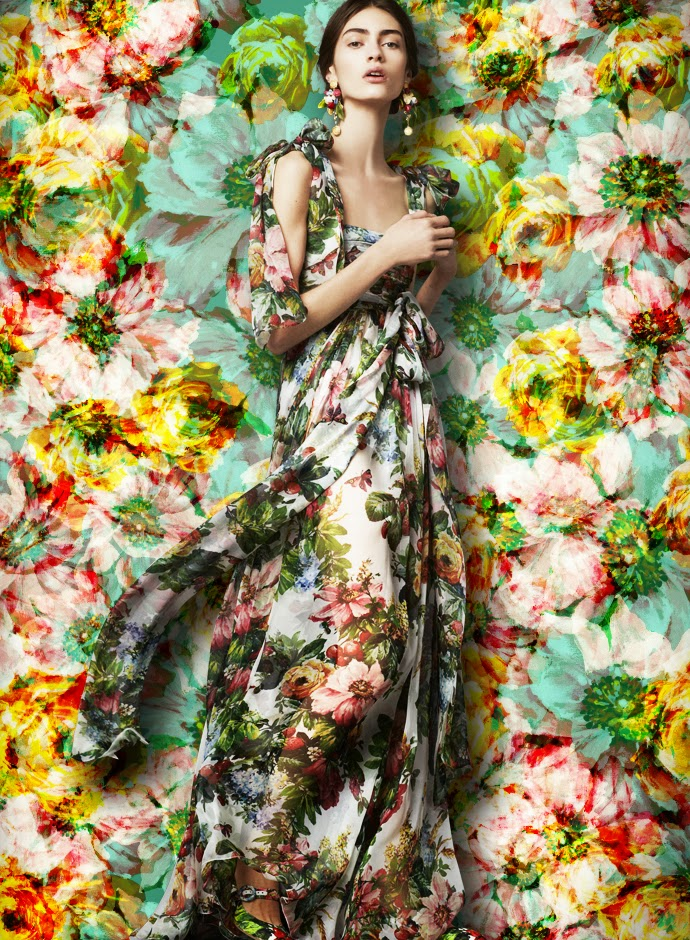 dolce-and-gabbana-fw-2014-womenswear-collection-flower-and-fruit-print-dress-printed-silk-chiffon-gown